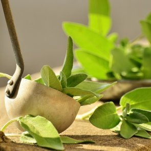 5 Amazing Benefits of Sage for Your Skin and Hair