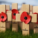 Remembrance Day / Armistice Day