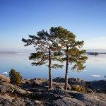 Finnish Nature Day