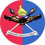 Defense Forces Day in Zimbabwe