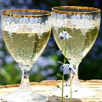 National Champagne Day