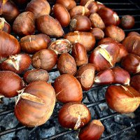Chestnut Festival in France